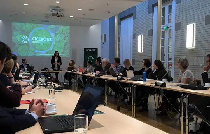 THIRD PLENARY MEETING OF CICERONE PROJECT
